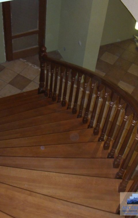 Лестница премиум p001